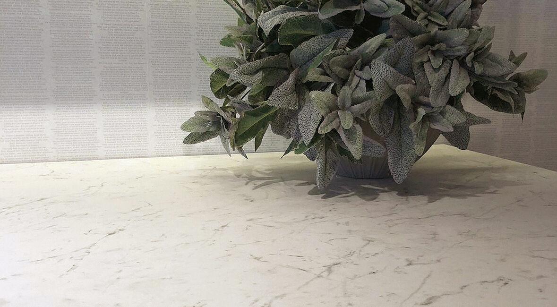 kerit: dettaglio angolo cucina con pianta
